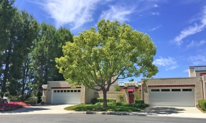 Cypress Pointe Homes for Sale in Mission Viejo