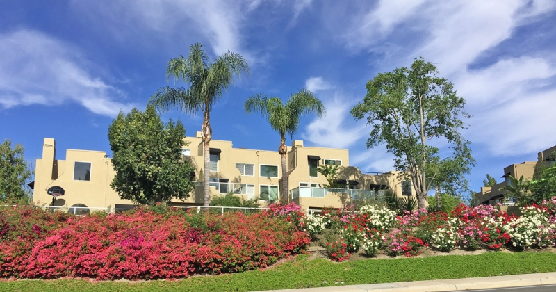 Rainbow Ridge Condos for sale in Mission Viejo