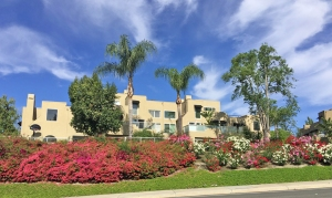 Rainbow Ridge Homes Sold in Mission Viejo